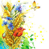Wild flower and wheat. watercolor — Stock Photo