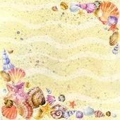 Sea shell on sea send illustration. — Stock Photo