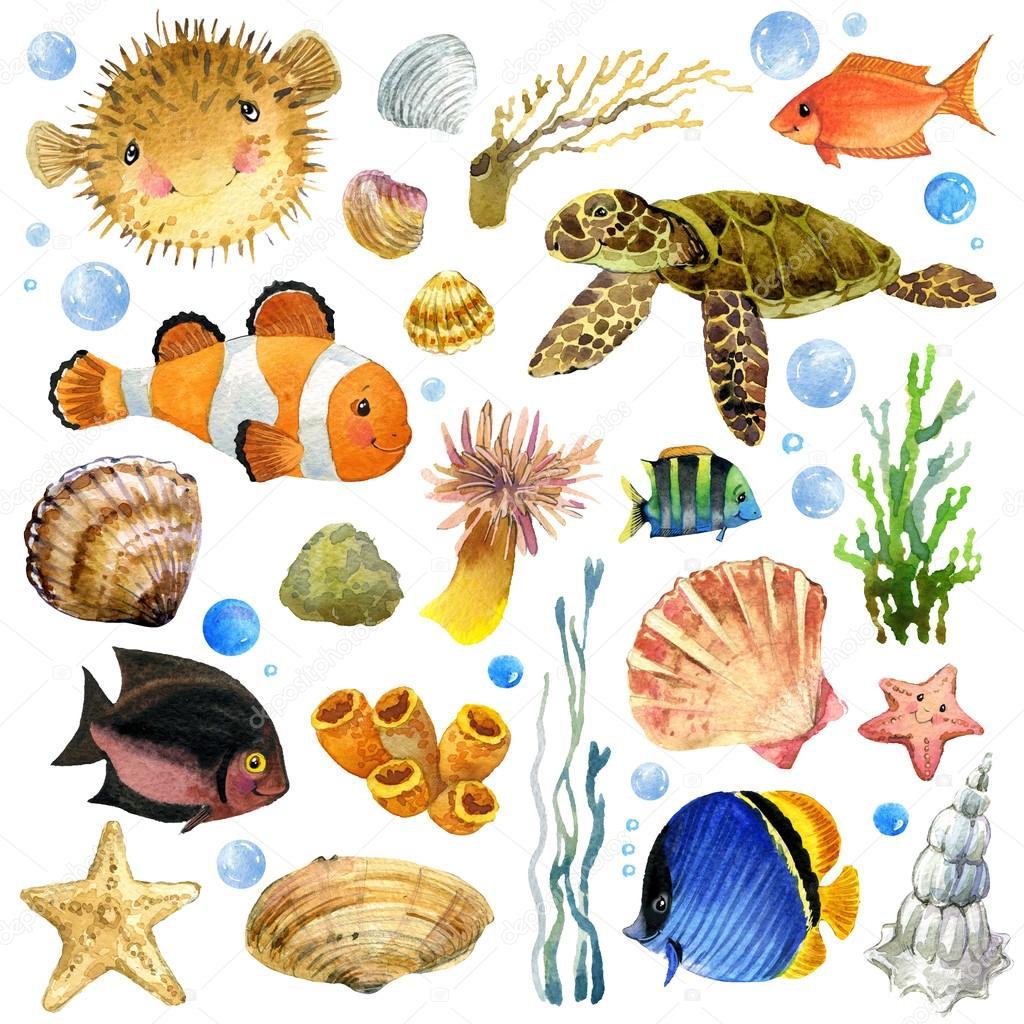 peces ex u00f3ticos  arrecife de coral  algas  fauna marina under the sea clipart images under the sea clip art free