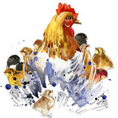 Chicken hen and chickens T-shirt graphics, chicken family illustration with splash watercolor textured background. illustration watercolor chicken family fashion print, poster for textiles, fashion design — Stock Photo