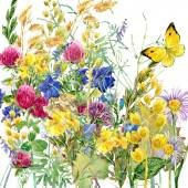 Summer rural field Herb flowers and butterfly background. watercolor illustration — 图库照片