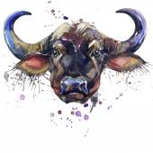 Buffalo T-shirt graphics,  African animals buffalo illustration with splash watercolor textured background. unusual illustration watercolor  buffalo fashion print, poster for textiles, fashion design — Stock Photo