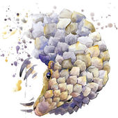 Armadillo T-shirt graphics,  African animals armadillo illustration with splash watercolor textured background. unusual illustration watercolor  armadillo fashion print, poster for textiles, fashion design — Stock Photo