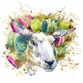 Sheep wife in curlers,  T-shirt graphics. sheep illustration with splash watercolor textured  background. unusual illustration watercolor sheep for fashion print, poster, textiles, fashion design — Stok fotoğraf