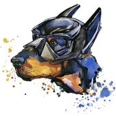 Doberman dog T-shirt graphics. Doberman dog illustration with splash watercolor textured  background. unusual illustration watercolor dog for fashion print, poster, textiles, fashion design — Foto de Stock