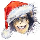 Monkey Santa Claus T-shirt graphics. monkey year illustration with splash watercolor textured background. unusual illustration watercolor monkey  for fashion print, poster, textiles, fashion design — Stock Photo