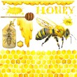 Honey, honeycomb, honey bee. Set for design label products from honey. Watercolor illustration — Stock Photo #81373276