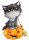 Halloween holiday little cat witch and pumpkin. Watercolor illustration background holiday Halloween. — Stock Photo