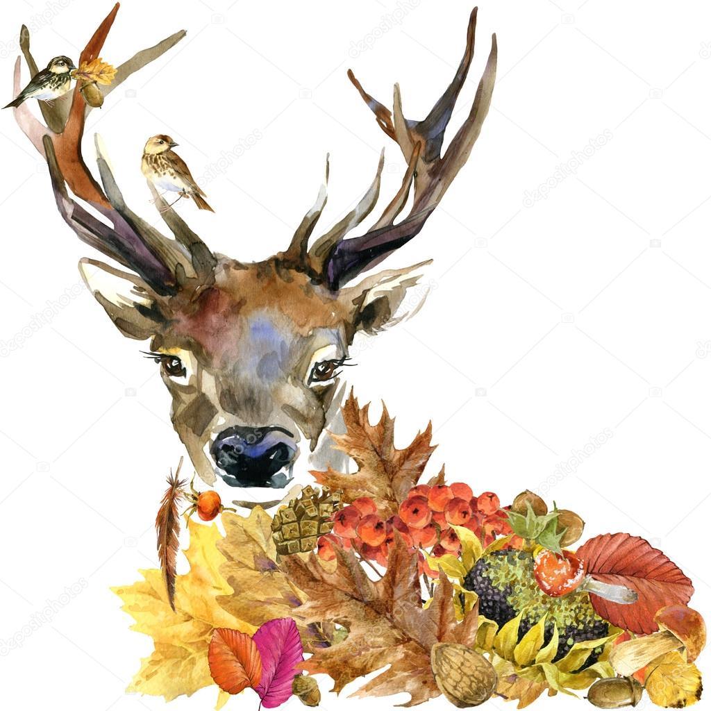 Картинки лесных животных осенью