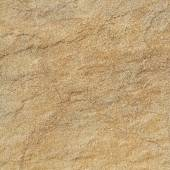 Warm fossil rock texture — Stock Photo