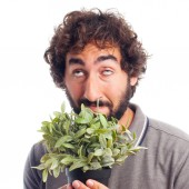 Young crazy man smelling a plant — Stockfoto