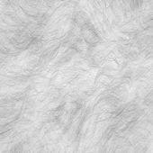 Animal hair — Stock Photo