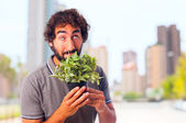 Young crazy man smelling a plant — Stock Photo