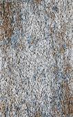 White small stones — Stock Photo