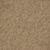 Warm fossil rock texture — Stock Photo