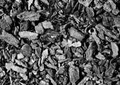 Coal pieces texture — Stock Photo