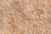Warm limestone texture — Stock Photo