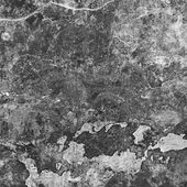 Gray stone texture — Stock Photo