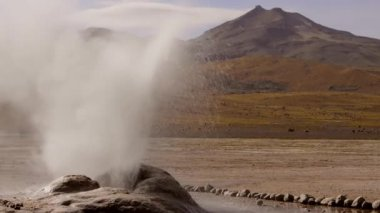 Erupting geyser in El Tatio Geyser valley, 4320 meters above sea level. One of the major tourist attractions in Chile. — Stock Video