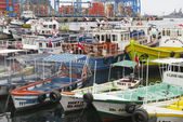 Excursion boats parked at the harbor of Valparaiso, Chile. — Stok fotoğraf