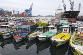 Excursion boats tied at the harbor of Valparaiso, Chile. — Stok fotoğraf