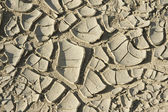 Dry soil at the former sea bed of the Aral sea, Aralsk, Kazakhstan. — Stock Photo