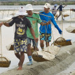 People carry salt  at the salt farm in Huahin, Thailand. — Stock Photo #64370933