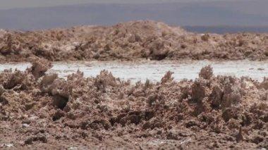 Exterior dos cristais de sal e argila no deserto de Atacama, Chile. — Vídeo stock