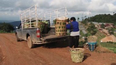 Man loads baskets with vegetables to the pickup in Chiang Mai, Thailand. — Stock Video