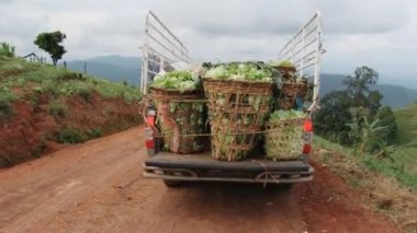 Pickup truck with vegetables departs from the plantation, Chiang Mai, Thailand. — Stock Video