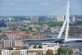 Aerial view to Erasmus bridge and the city of Rotterdam, Netherlands. — Stock Photo