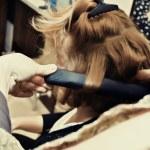 Hairdresser — Stock Photo #68730547