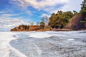 Spring. Siberia, river Ob — Stock Photo