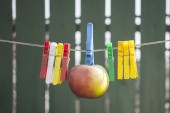 Apple hang on rope between clamps — Stock Photo