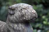 Close up of  Statue of feline — Stock Photo