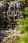 Green garden pond and waterfall — Stock Photo