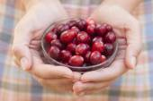 Cranberry in woman's palms — Stock Photo