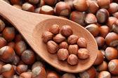 Hazelnuts in a wooden spoon — Stock Photo