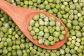 Frozen green peas in a wooden spoon — Stock Photo