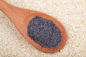 Poppy seeds in a wooden spoon — Stock Photo