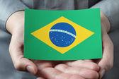 Brazilian flag in palms — Stock Photo