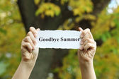 Goodbye Summer — Stock Photo