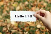Hello Fall — Stock Photo