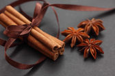 Cinnamon sticks and star anise — Stock Photo