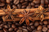 Cinnamon sticks, star anise and coffee beans — Stock Photo