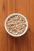 Pearl barley in a bowl — Stock Photo