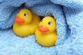 Rubber Ducks after bath wrapped in towel — Stock fotografie