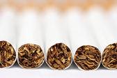 Cigarettes close-up — Stock Photo