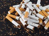 Broken cigarettes closeup — Stock Photo