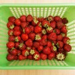 Image of lots of fresh strawberries — Stock Photo #76704319